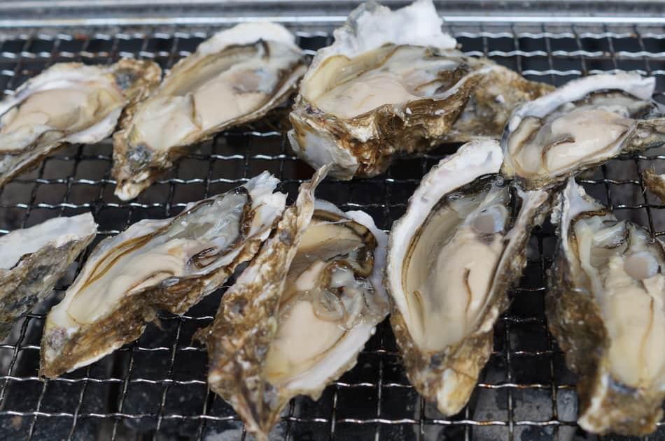 """""""九州""""糸島産地 直売・直送の海産物 牡蠣"""
