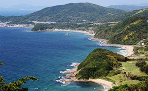 おきゅうと おきゅうと草 ケボ エゴノリ 天然 博多 福岡 九州 漁師 手摘み おきゅうととは