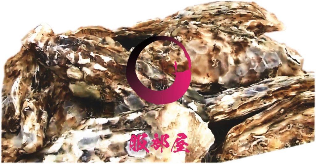 活牡蠣 糸島 船越 福岡 服部屋 人気 美味しい 牡蠣小屋 13