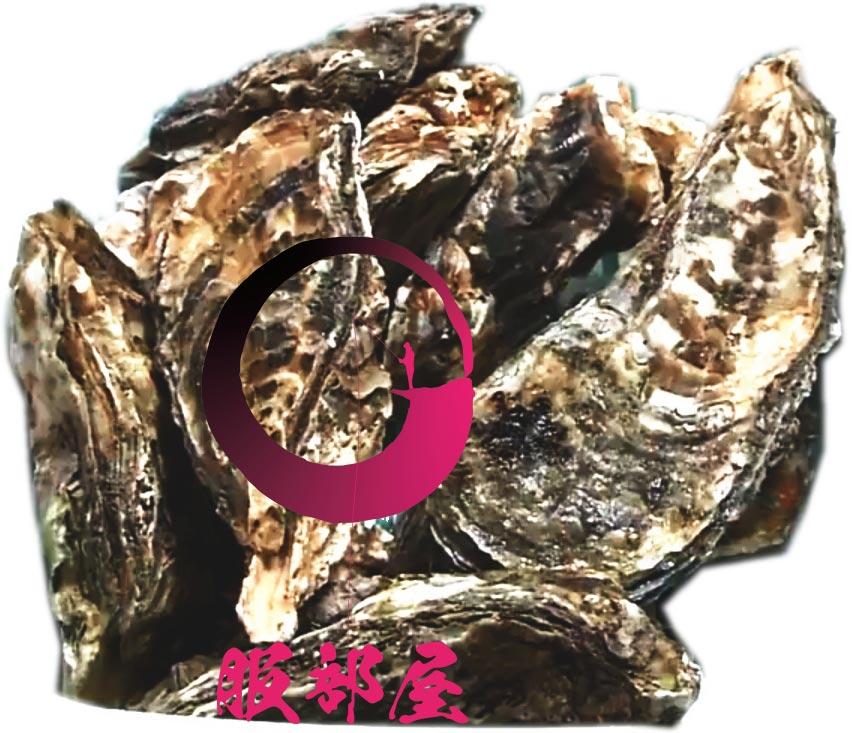 活牡蠣 糸島 船越 福岡 服部屋 人気 美味しい 牡蠣小屋 15